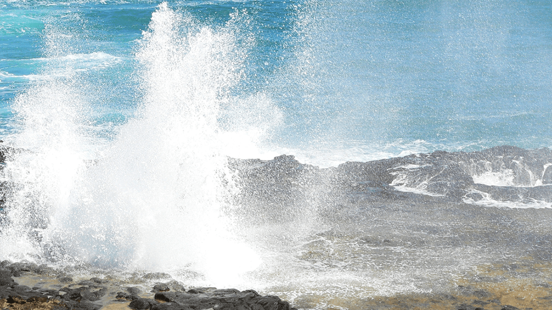 Hawaii's Salt Spray