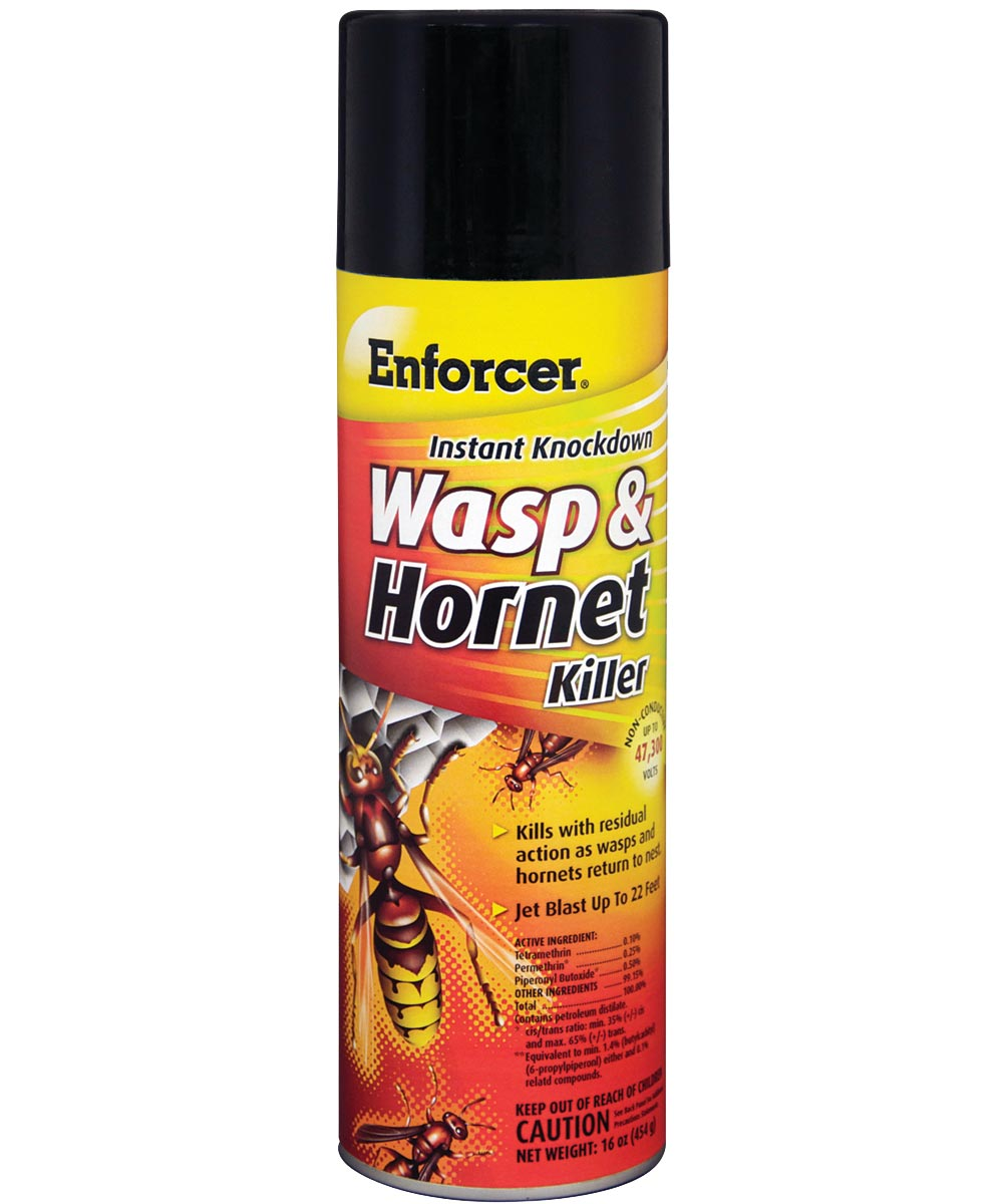 Enforcer Instant Knockdown Wasp & Hornet Killer, 16 oz. Aerosol Spray