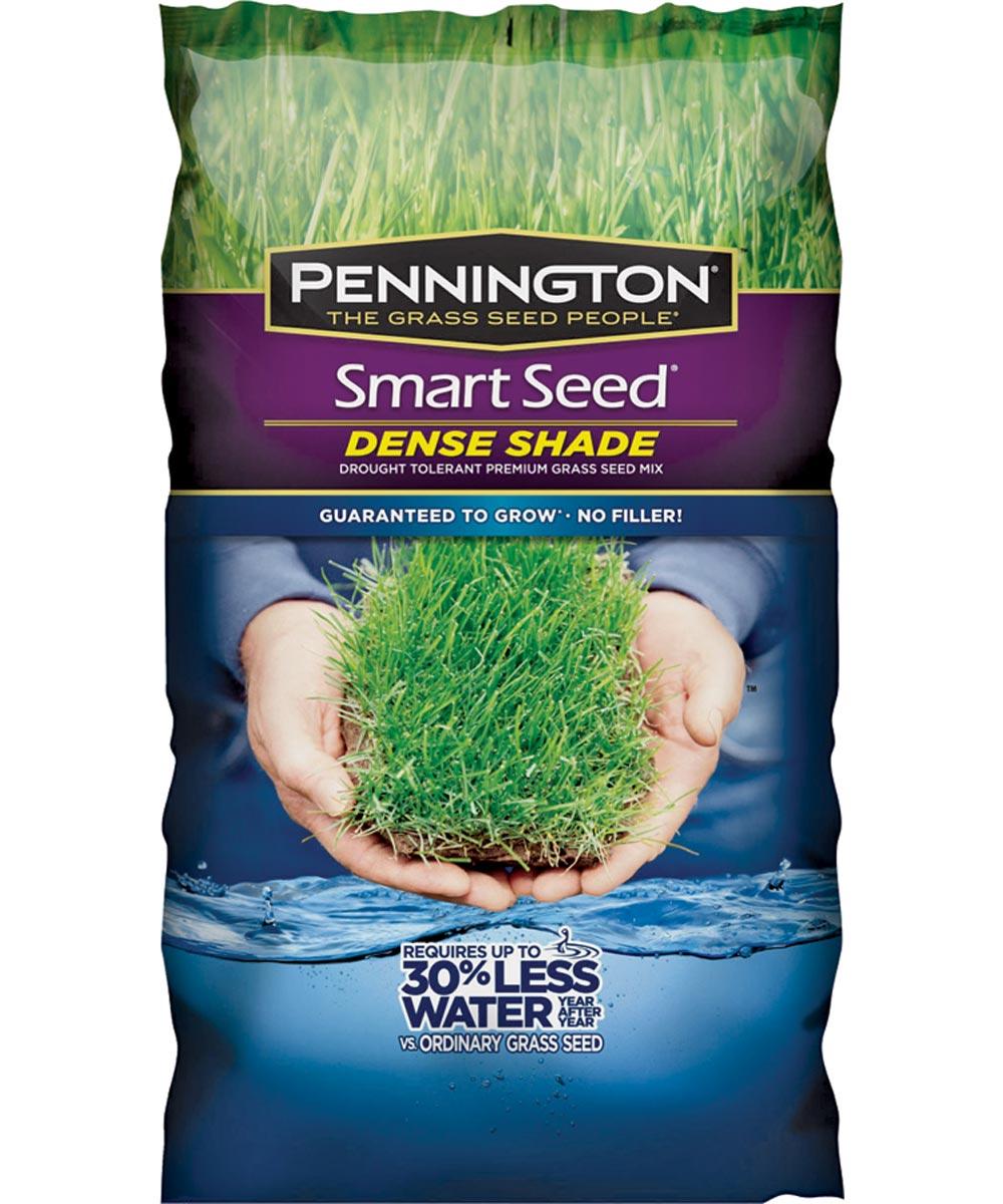 Dense Shade Grass Seed, 7 lb., Bag, 4200 sq-ft