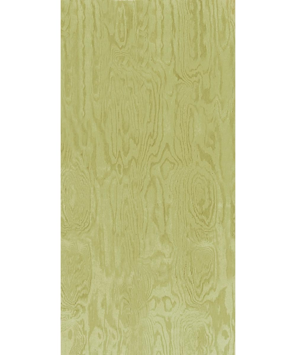 1/2 in. x 4 ft. x 8 ft. Treated Douglas Fir CDX Plywood
