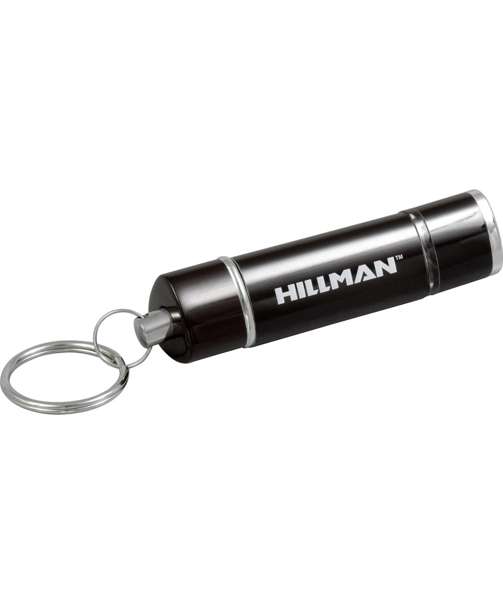 Key Chain with flashlight and lantern