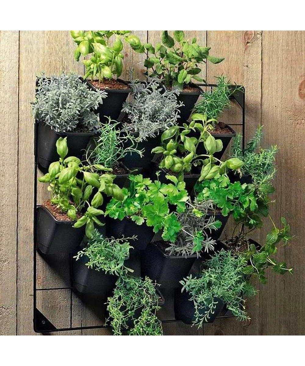 Vertical Wall Garden Kit