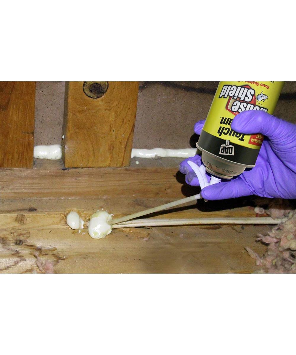 DAP Mouse Shield Touch N Foam Sealant and Pest Blocker, 12 oz.