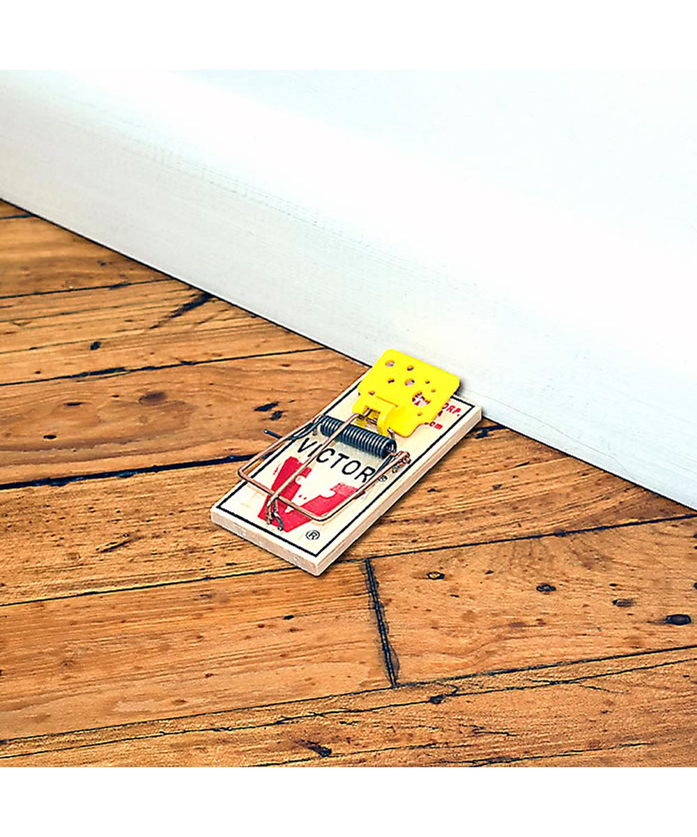 Victor Easy Set Mouse Trap, 4 Pack