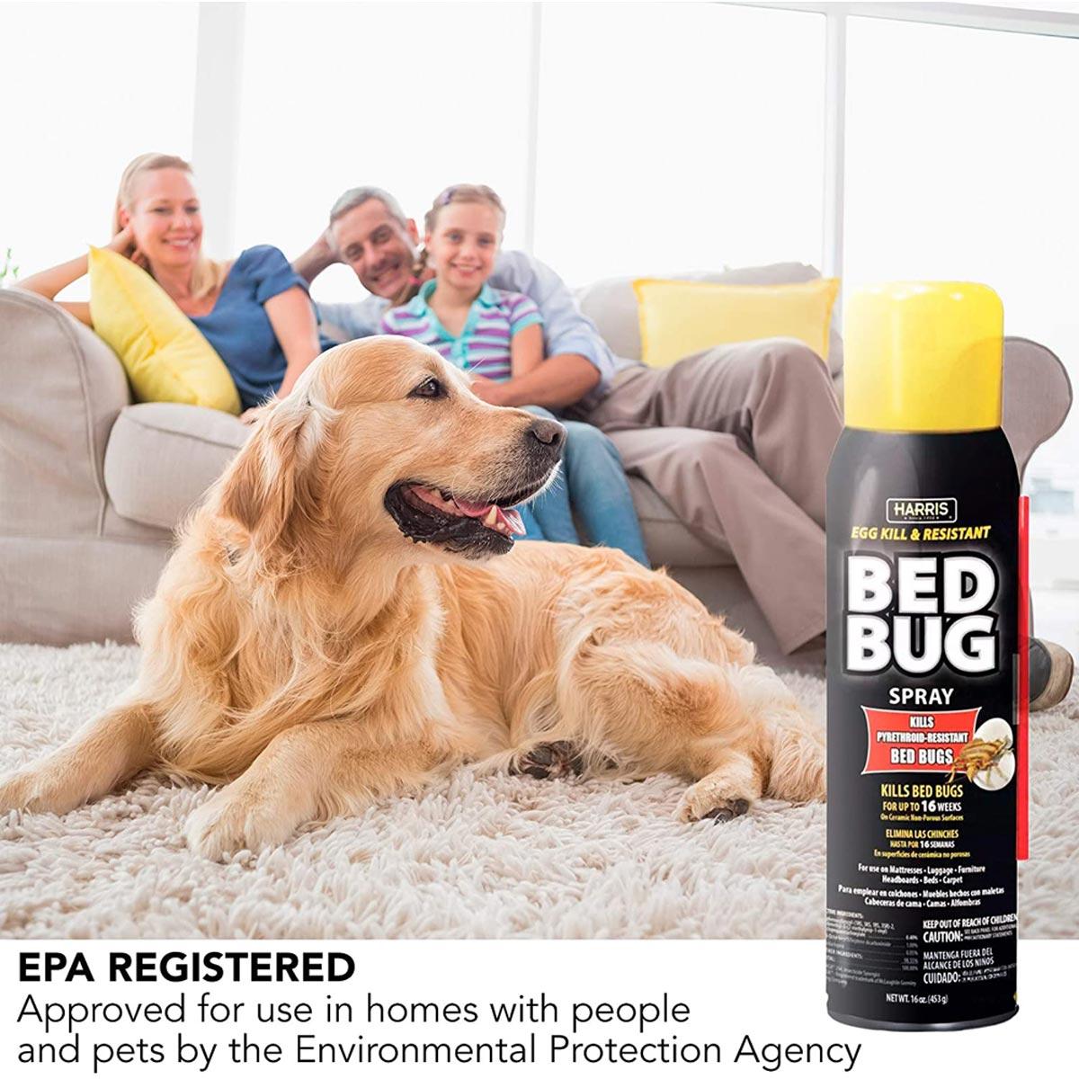 Harris Egg Kill & Resistant Bed Bug Killer, 16 oz. Aerosol Spray