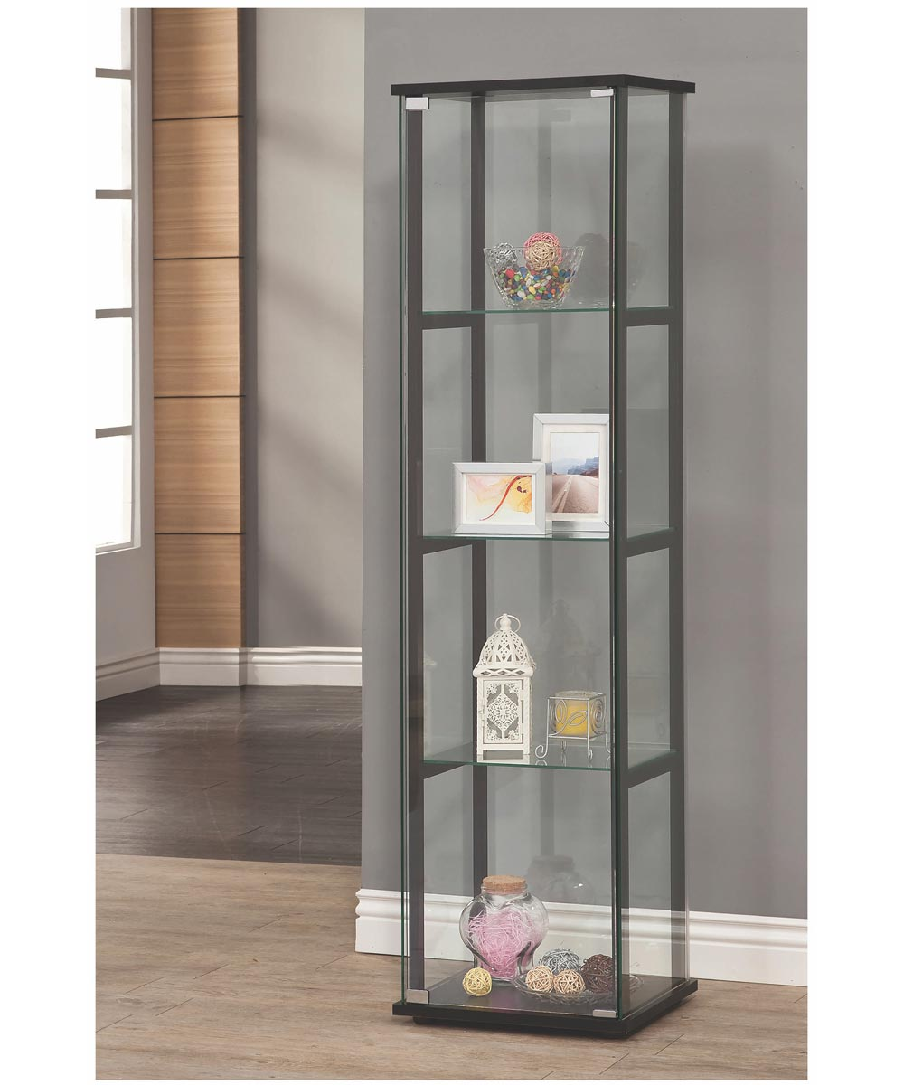 Single Door Glass Curio and Black Frame
