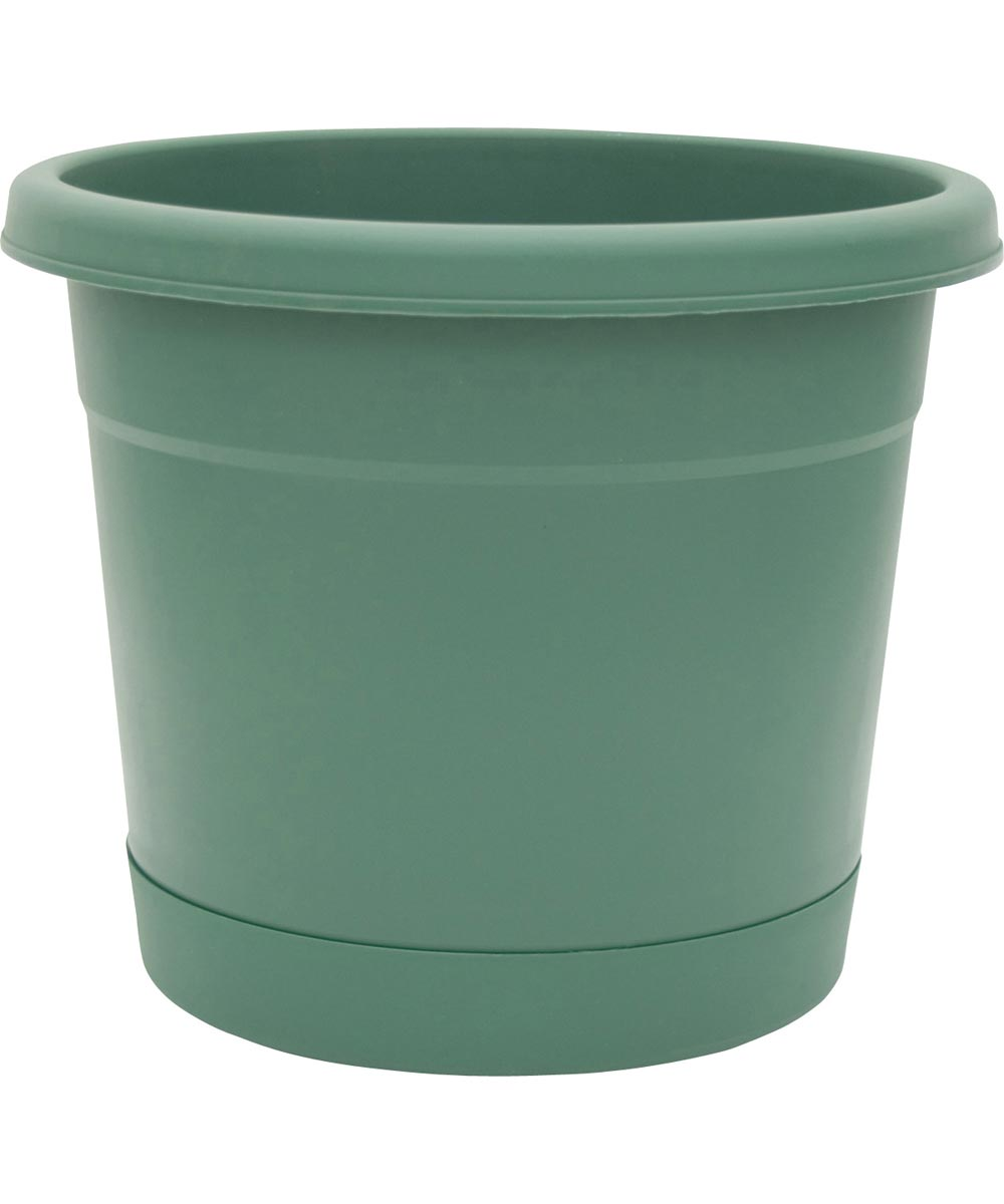 10 in. Fern Rolled Rim Planters