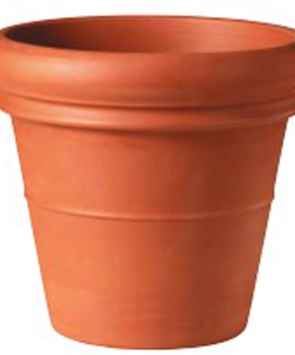 Pot Clay Low Dble Rim 14 in.