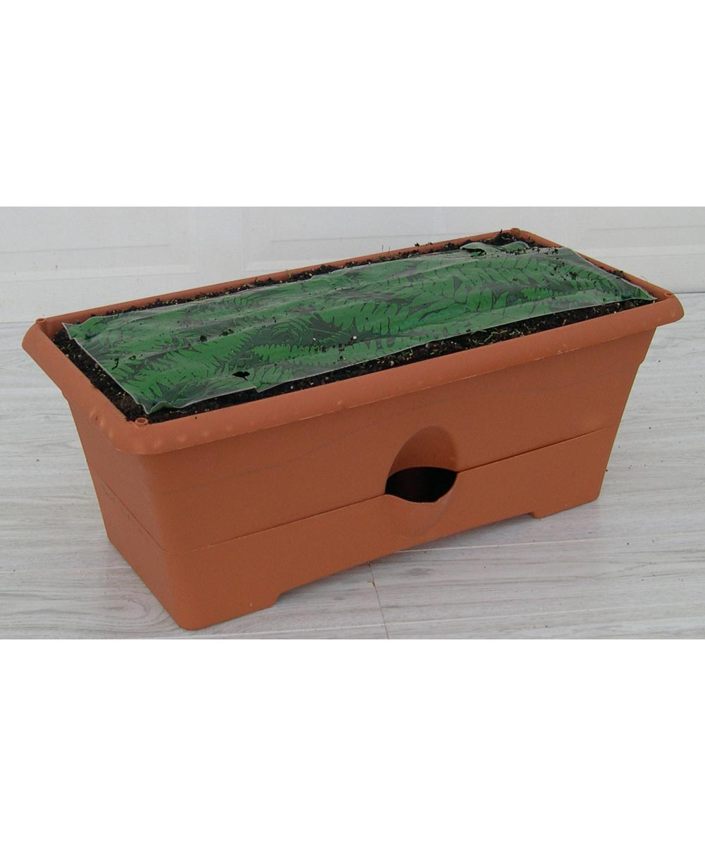 Terra Cotta The Garden Patch Grow Box