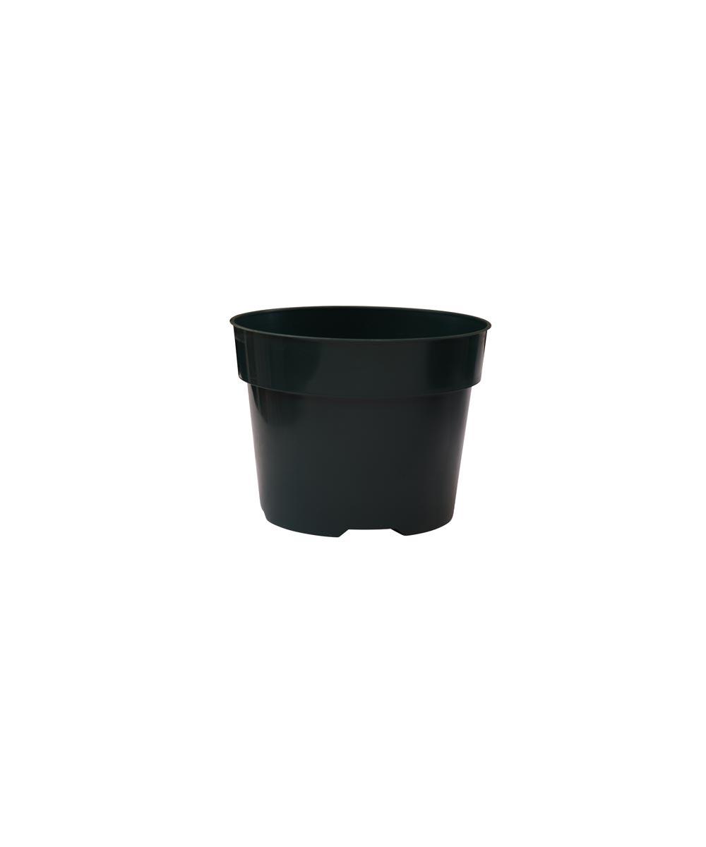 5 in. Plastic Planting Pot for Azaleas