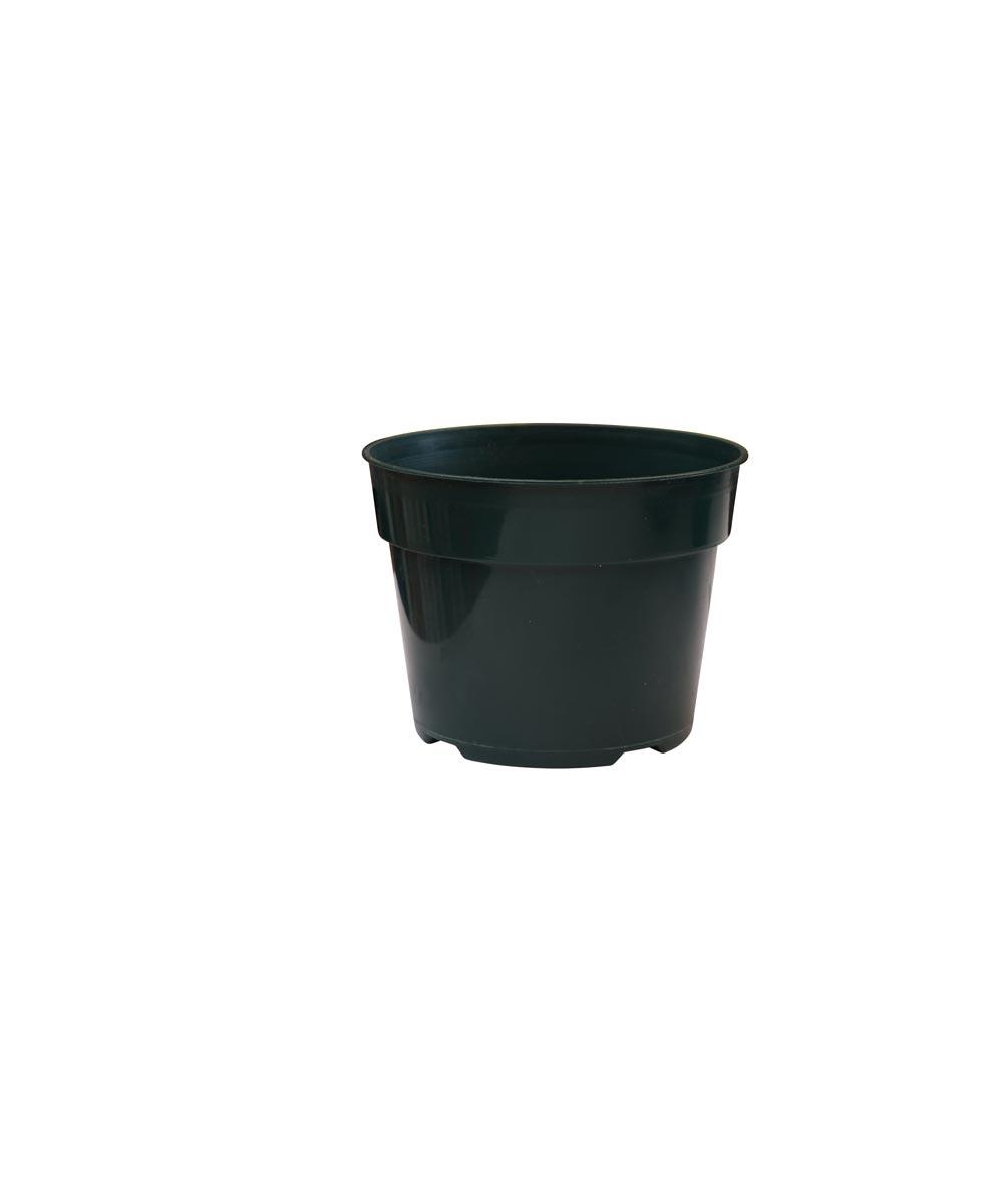 6 in. Plastic Planting Pot for Azaleas