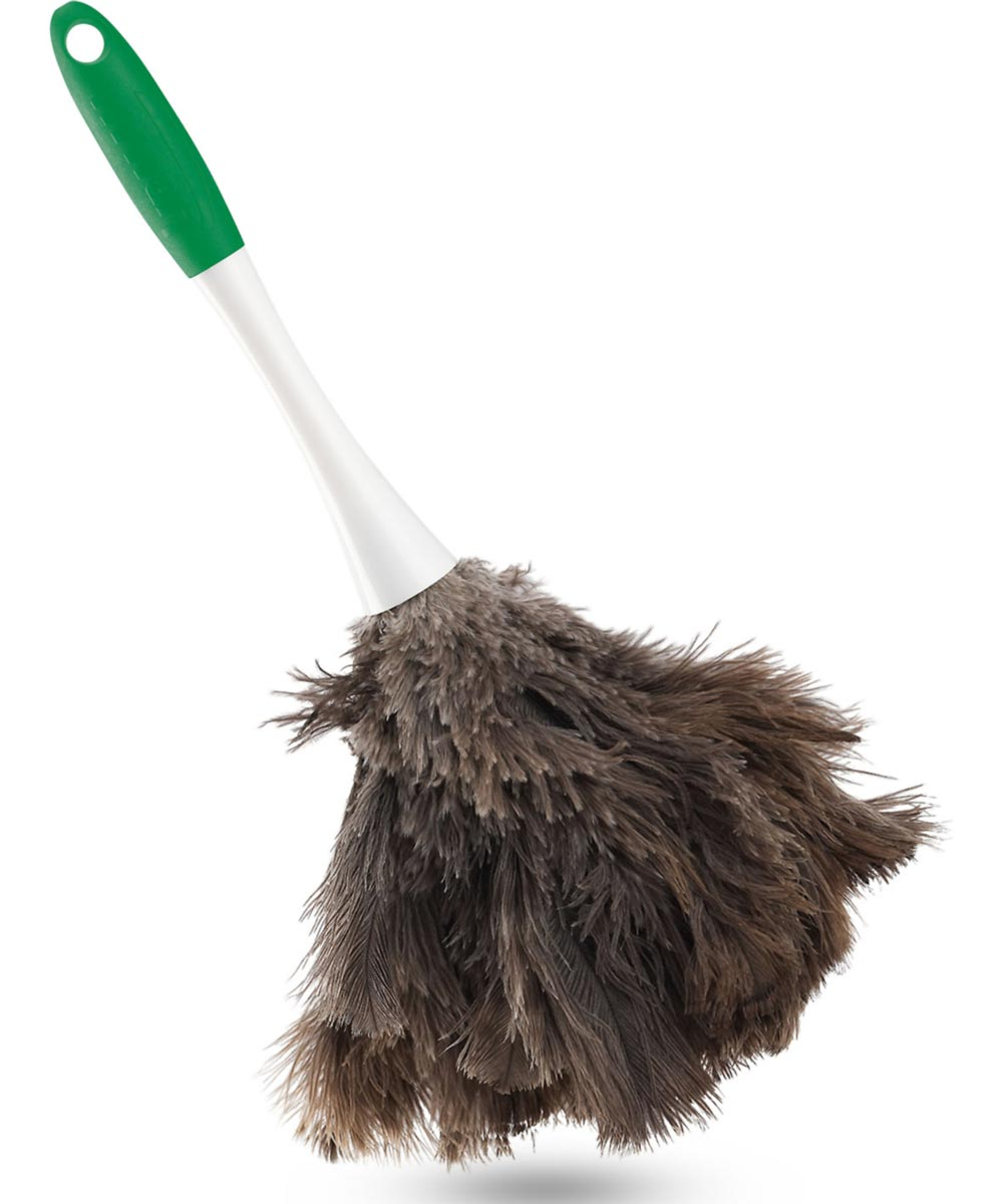 Big Feather Duster