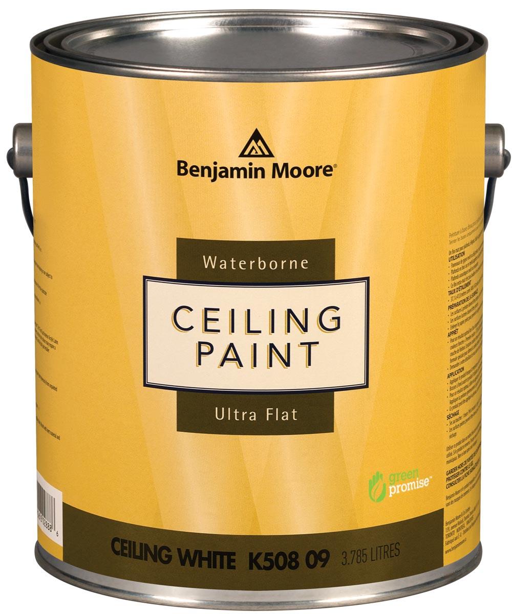 1 Gallon Waterborne Ceiling Paint, Ultra Flat
