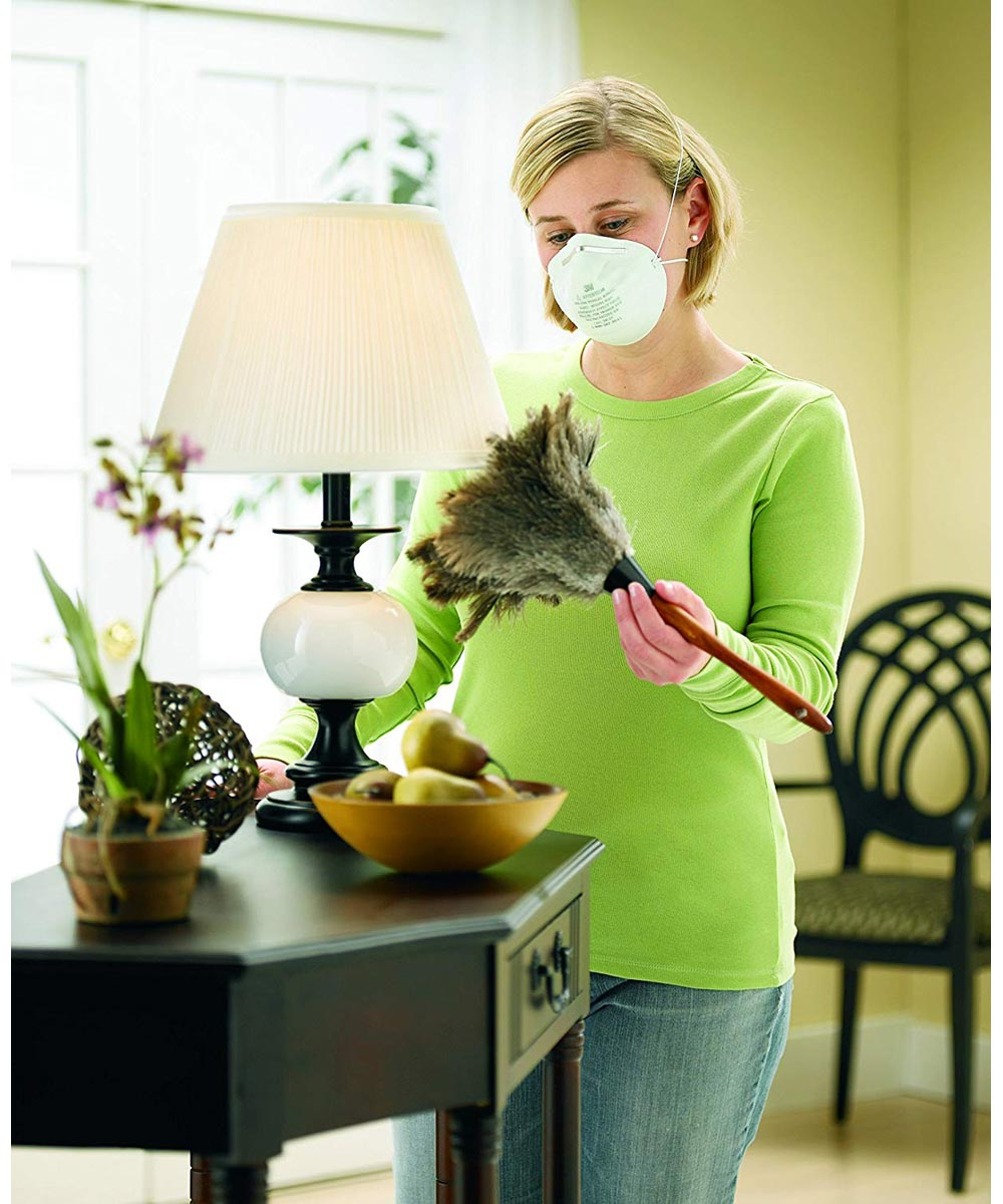 3M 5-Pack Home Respirator Dust Mask