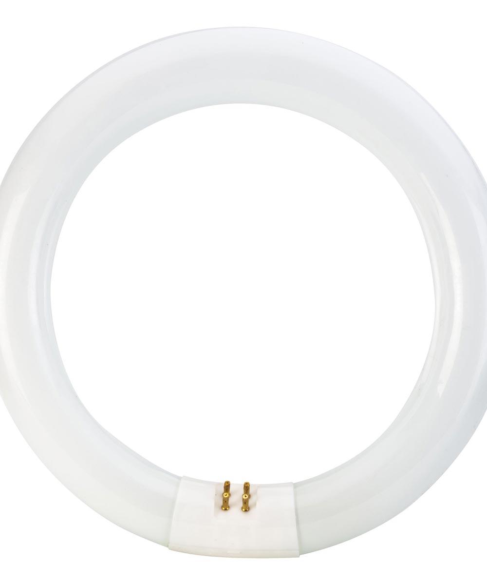 22 Watt 8 in. Circline Soft White T9 Kitchen & Bath Light Bulb