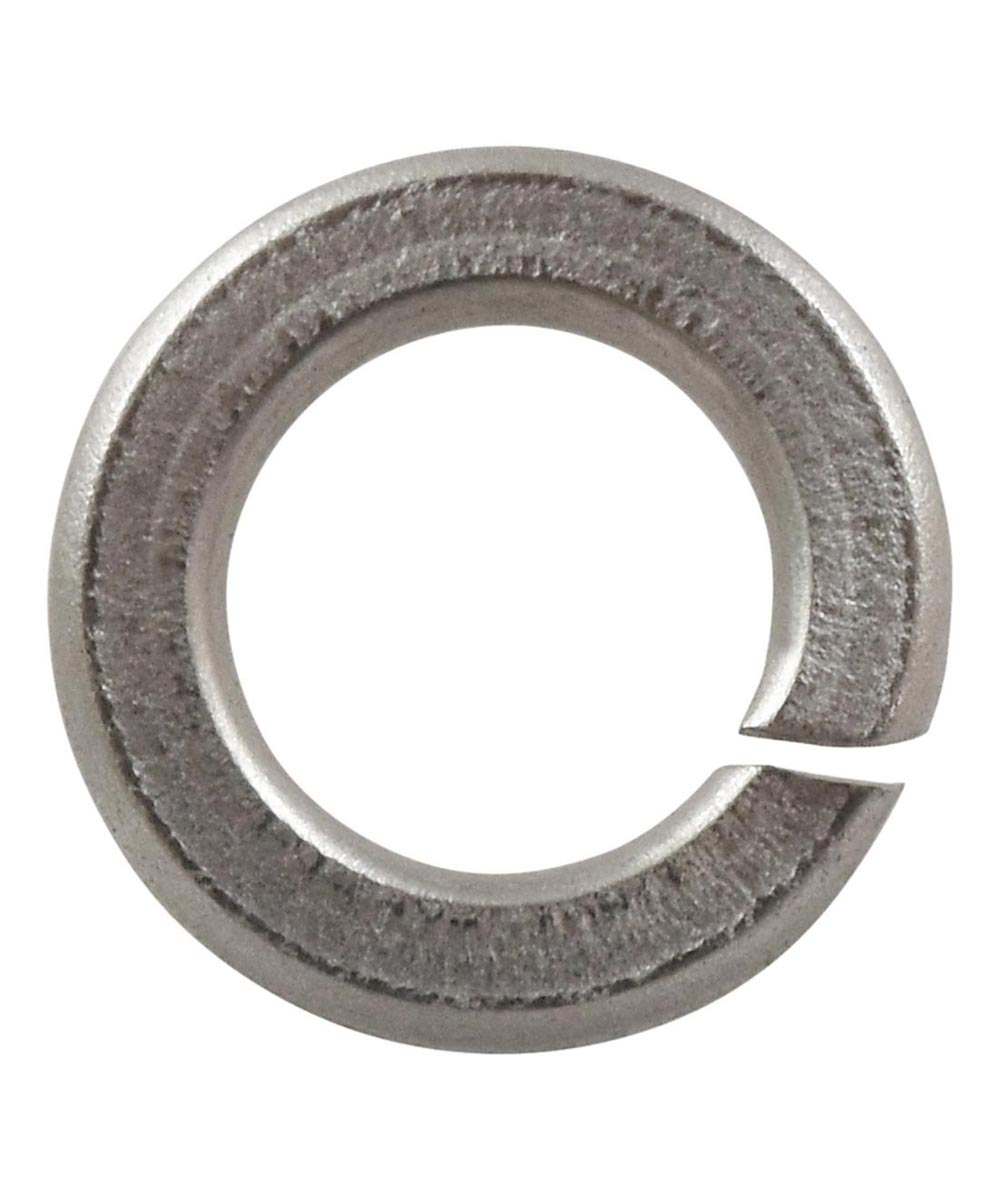 Stainless Steel Lock Washer (1/4 in. Screw Size)