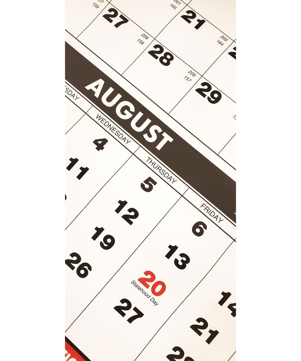2021 City Mill 13.25 in. x 27.25 in. Wall Calendar