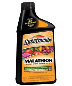 Spectracide Malathion Insect Spray, 16 oz. Concentrate
