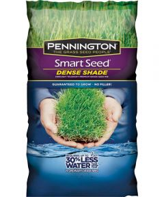Dense Shade Grass Seed, 7 lb., Bag, 4200 sq-ft