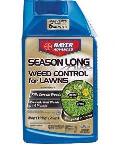 Bayer Advanced 2-in-1 Concentrate Weed Control, 24 fl-oz., Spray Container, White, Liquid