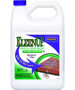 KleenUp Concentrate Weed and Grass Killer, 1 gal, Amber/Light Brown, Liquid