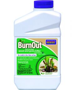BurnOut Concentrate Weed and Grass Killer, 32 oz.