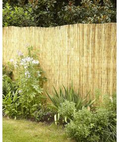 6 ft. x 16 ft. Gardenpath Peeled and Polished Reed Fence