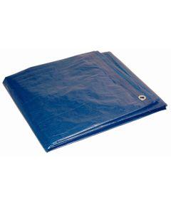8 ft. x 10 ft. 7 Mil Blue Dry Top Tarp