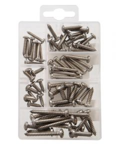 Stainless Steel Pan Head Phillips Tapping Screws Kit Small
