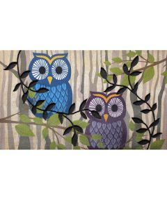 Multy 18 in. x 30 in. Retro Owls Door Mat