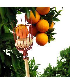 Bond Fruit Harvester with 8 ft. Handle