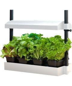 SunBlaster T5HO Growlight Garden Micro - Indoor Gardening Kit, White