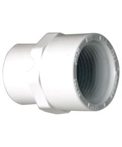 1/2 in. PVC Male Adapter, S x F