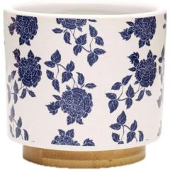 Southern Patio 3.5 in. Melissa Small Ceramic Succulent Planter Bowl