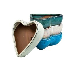 Geobunga 6 in. Small Heart Shaped Succulent Pot, Assorted Colors