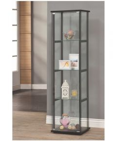 Single Door Glass Curio and Black Frame