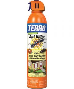 Terro Outdoor Ant Killer Spray