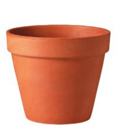 Pot Clay Stndrd 2 in.