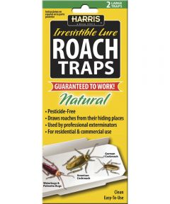 All Natural Pesticide-Free Glue RoachTrap