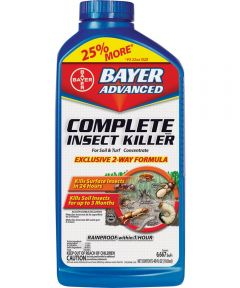 Bayer Advanced Concentrated Two Way Insect Killer, 40 oz Container, White to Light Beige, Liquid