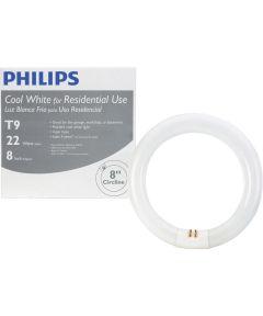 8 inch 22-Watt T9 Cool White Circline Fluorescent Light Bulb