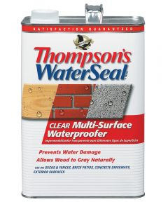 1 Gallon Clear WaterSeal Multi-Surface Waterproofer