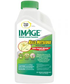 Image Concentrate Nutsedge Killer, 24 oz., Jug, 6000 sq-ft., Granular