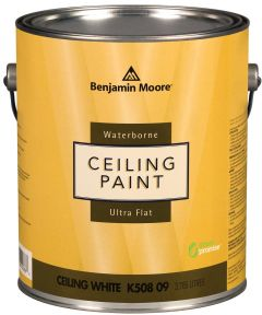 1 Gallon Waterborne Ceiling Paint, Ultra Flat