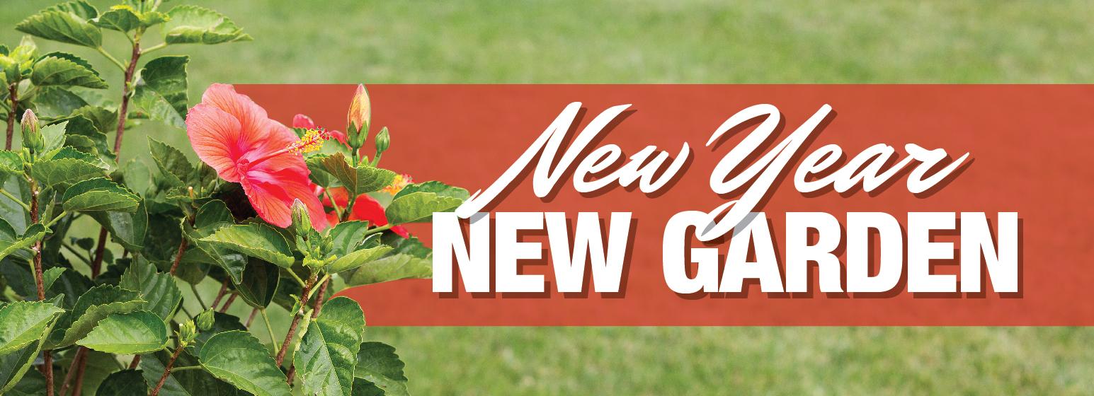 New Year, New Garden