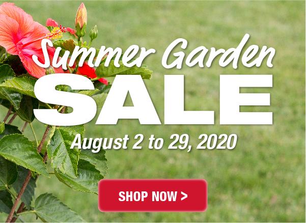 City Mill Summer Garden Sale! August 2 to 29, 2020